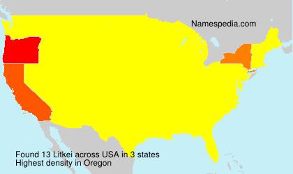 Familiennamen Litkei - USA