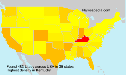 Surname Litsey in USA