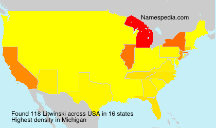 Surname Litwinski in USA