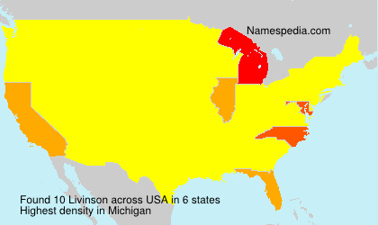 Surname Livinson in USA