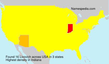 Familiennamen Livovich - USA