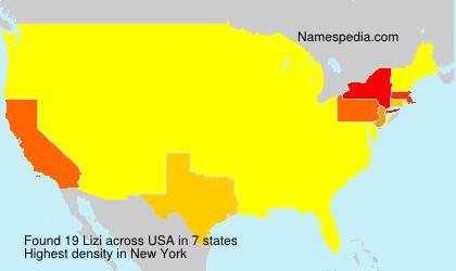 Surname Lizi in USA