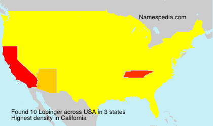 Surname Lobinger in USA