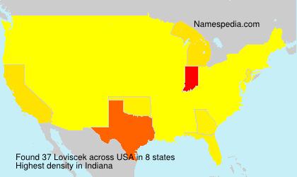 Surname Loviscek in USA