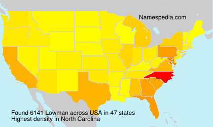 Surname Lowman in USA