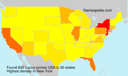 Surname Lucca in USA