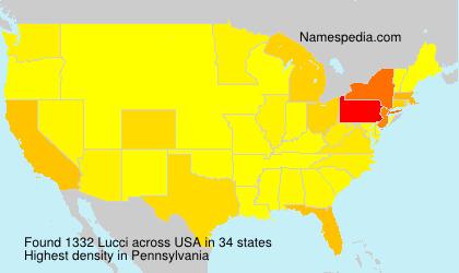 Surname Lucci in USA