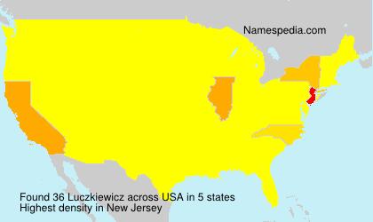 Surname Luczkiewicz in USA