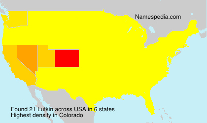 Surname Lutkin in USA