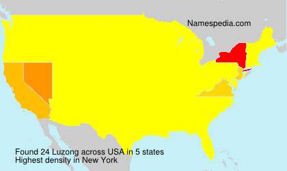 Surname Luzong in USA
