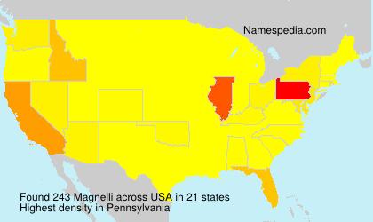 Surname Magnelli in USA