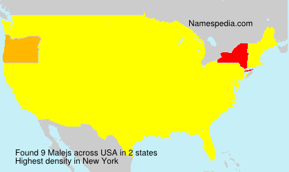 Surname Malejs in USA
