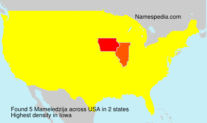 Mameledzija - USA