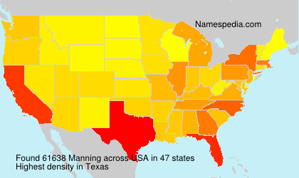 Surname Manning in USA
