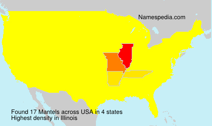Surname Mantels in USA