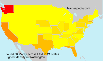 Surname Marey in USA