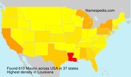 Surname Maurin in USA