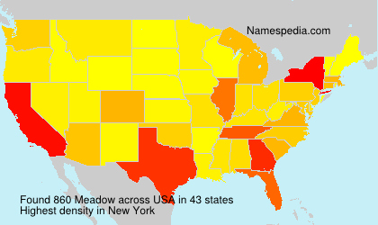 Surname Meadow in USA