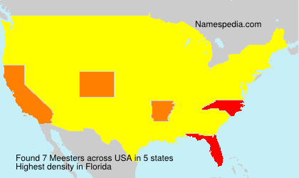 Surname Meesters in USA