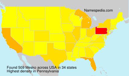 Surname Mesko in USA