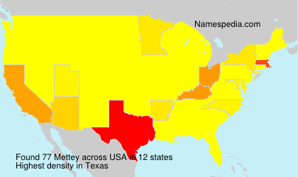 Surname Mettey in USA