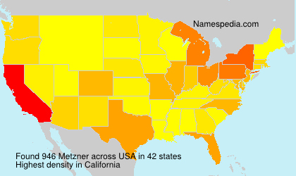 Surname Metzner in USA