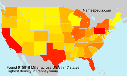Surname Miller in USA