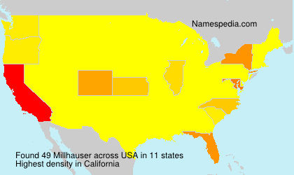 Surname Millhauser in USA