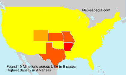 Surname Minellono in USA
