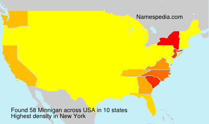 Surname Minnigan in USA
