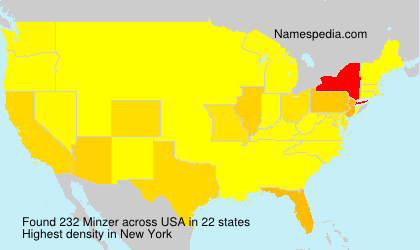 Surname Minzer in USA
