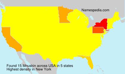 Surname Mnuskin in USA