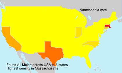 Familiennamen Molari - USA