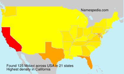 Surname Molavi in USA