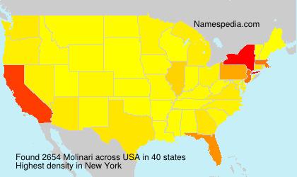 Familiennamen Molinari - USA