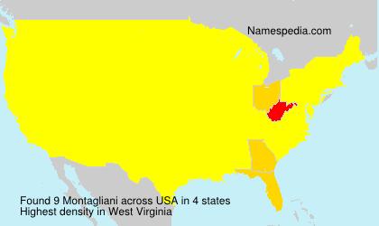 Surname Montagliani in USA