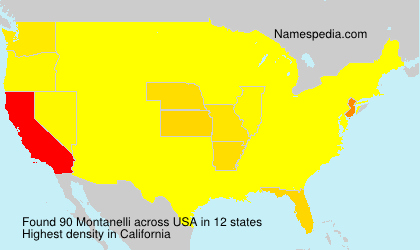 Surname Montanelli in USA
