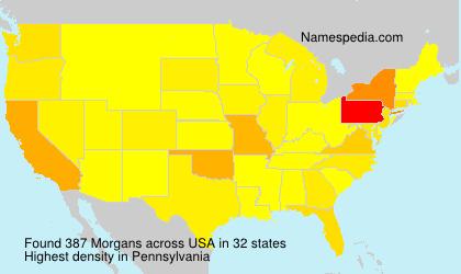 Morgans - USA