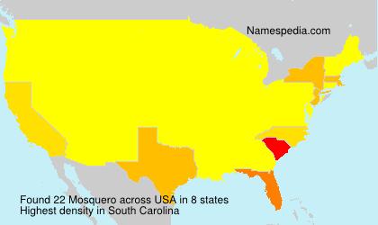 Surname Mosquero in USA