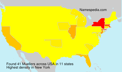 Surname Muellers in USA