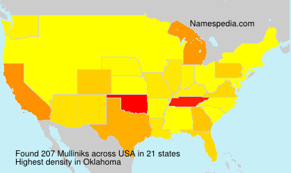 Surname Mulliniks in USA