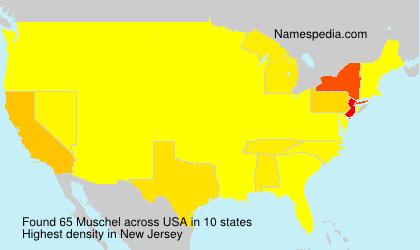 Familiennamen Muschel - USA