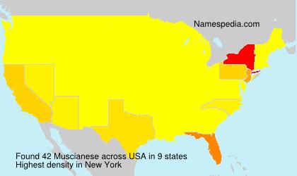 Muscianese