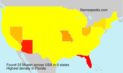 Surname Muslet in USA