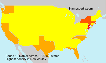 Surname Nabiel in USA