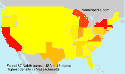 Surname Nabih in USA