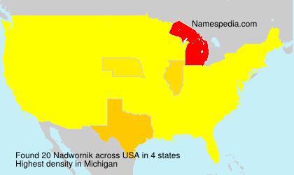 Nadwornik - USA