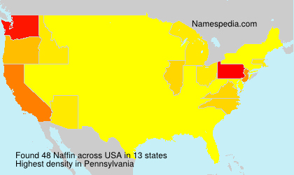 Surname Naffin in USA