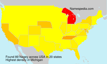 Surname Nagey in USA