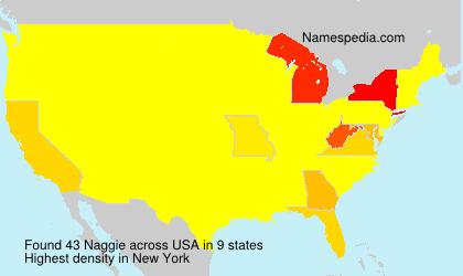 Familiennamen Naggie - USA
